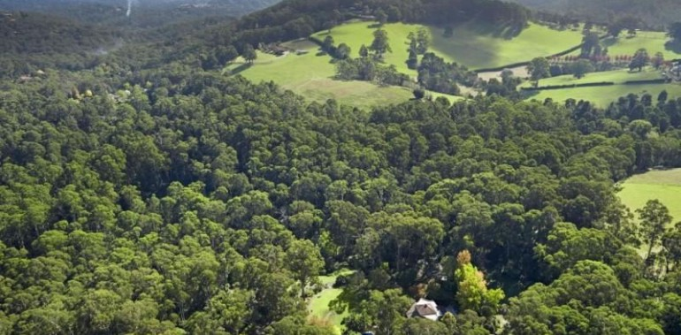 Hill View, Selby, Dandenong Ranges
